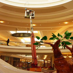 Tetail, mall, and shopping center window cleaners in Columbus, Ohio